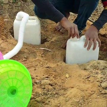 Big Snake Trap - Unbelievable Snake Catch With Fish - Boy Build Snake-Trap Jungle.