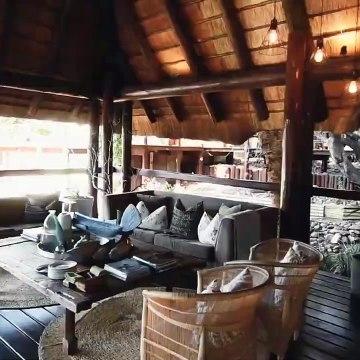 Kruger National Park, South Africa's famous safari