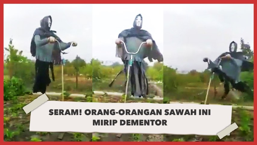 Seram! Orang-orangan Sawah Ini Mirip Dementor
