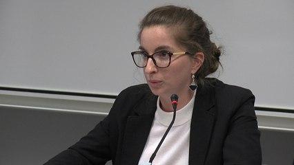 « Les QPC électorales », Anna Zachayus, doctorante IMH, @IMH - Journée décentralisée de l'AFDC - Représentation et gouvernement, quels modèles électoraux ?
