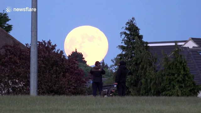 Strawberry moon rises stunningly close over East London