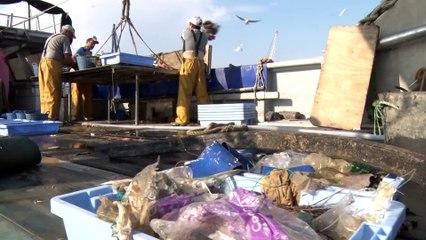 Los grandes desafíos en el 'Día Mundial de los Océanos'