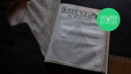 """[HISTOIRE ET BOTANIQUE] Trésors de la bibliothèque :  Histoire de la revue  """"Le Charivari"""""""