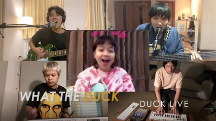 What The Duck - Duck Live 79 - ANT LANDOKMAI x quicksand bed [Official Video]