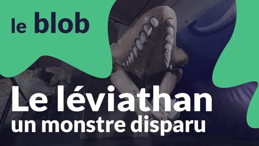Le léviathan | Monstres disparus