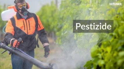 Pestizide - das unsichtbare Gift