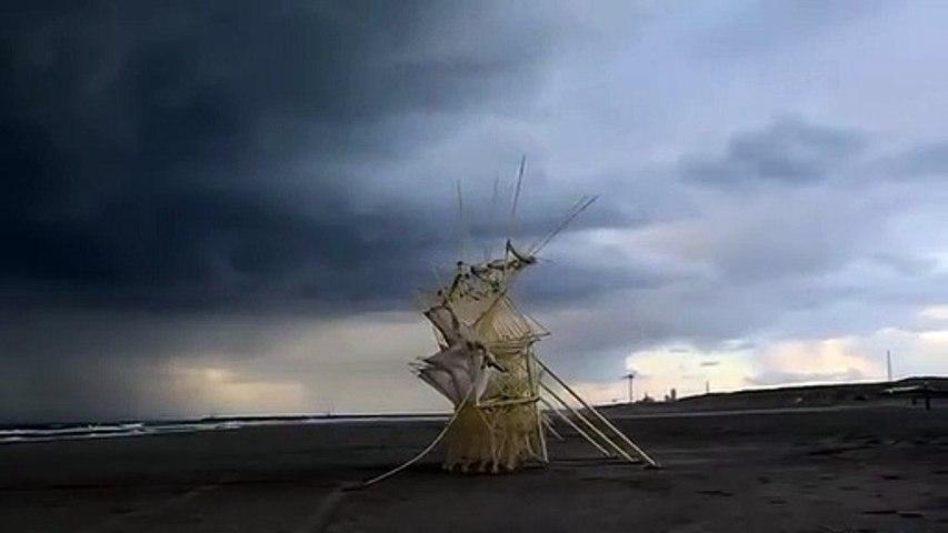 Art et talent : Les sculptures cinétiques sur une plage