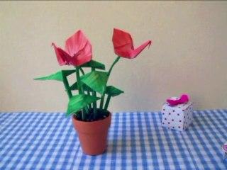 Origami Scarlet Anthurium