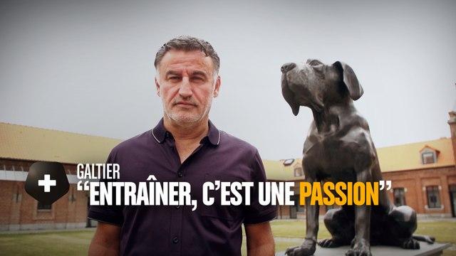 """Christophe Galtier : """"Entraîner, c'est une passion"""""""