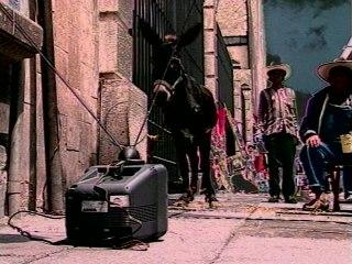 Molotov - Que No Te Haga Bobo Jacobo
