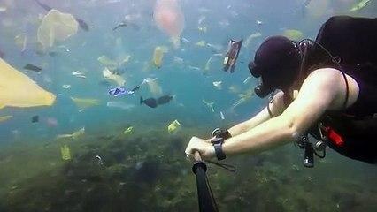 Voyage : Déchets sous marin près de Bali
