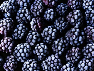 Frozen Berries Sold at Wal-Mart, Save-A-Lot Recalled for Possible Norovirus Risk