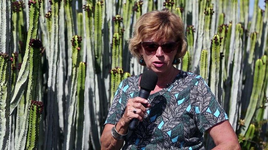 Reportage : Tenerife, à couper le souffle !