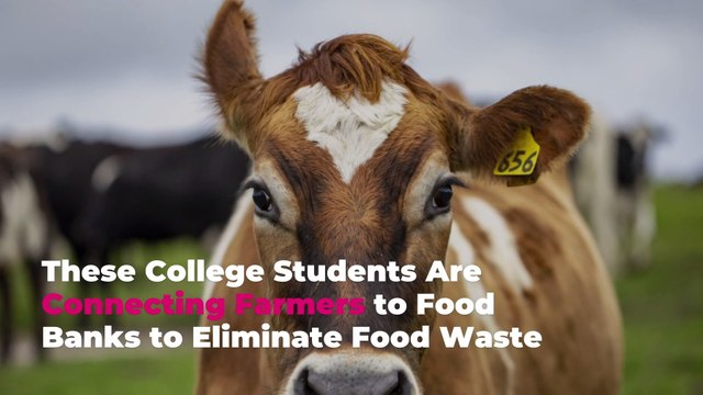 These College Students Are Connecting Farmers to Food Banks to Eliminate Food Waste