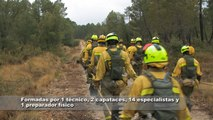 Brigada de refuerzo para incendios forestales