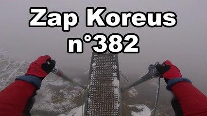 Zap Koreus n°382