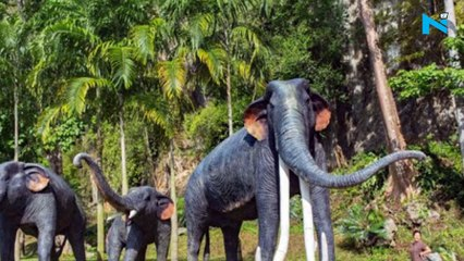 5 million years old elephant fossils discovered from Shivalik range of Saharanpur