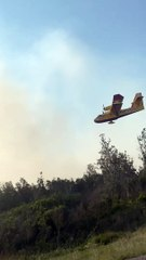 Des images spectaculaires des avions de la SOPFEU en bordure de l'A20