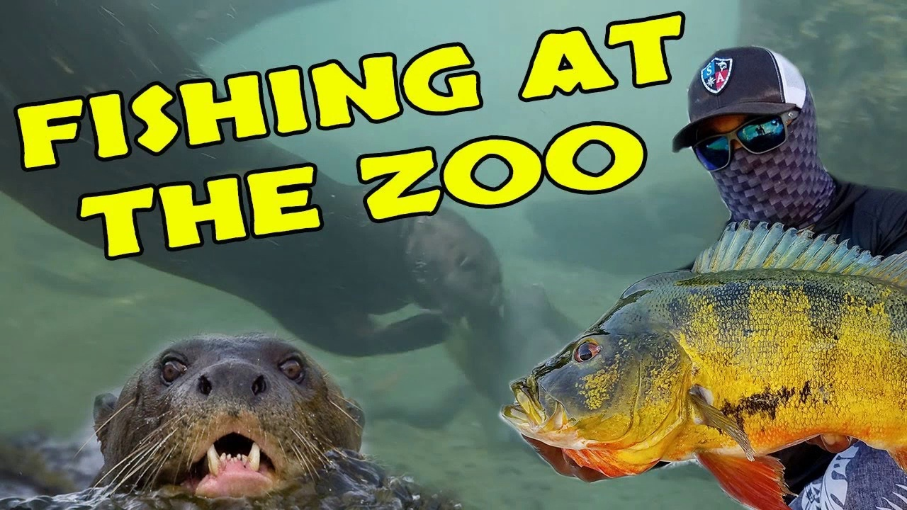 FISHING AT THE ZOO!!!