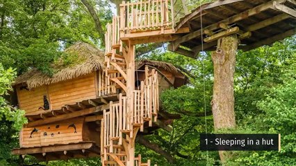 5 ideas for unusual accommodation with a family