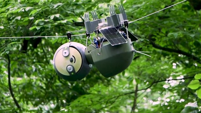 'Slothbot' saves endangered species by moving slowly to see the big environmental picture