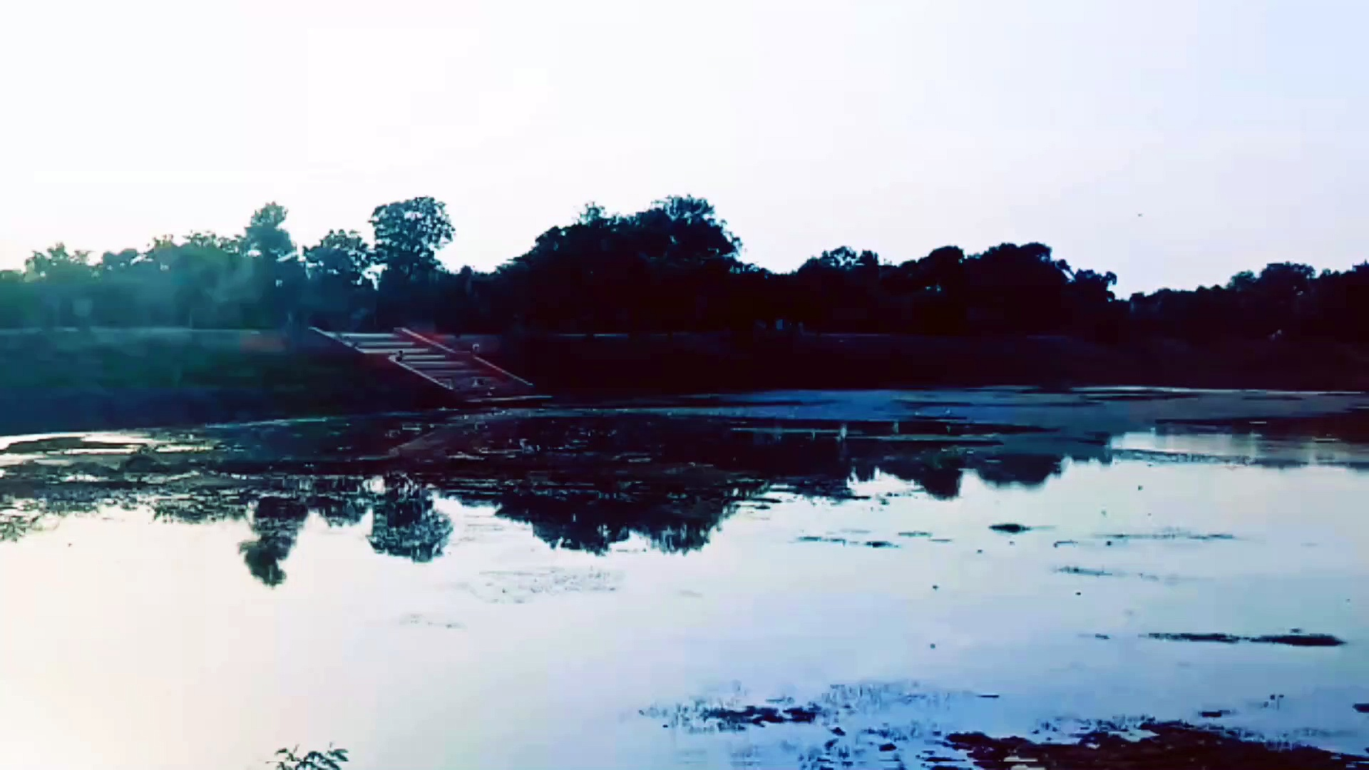 PONDS LOOK . NATURE VIDEOS . #nature #ponds