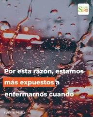 Evita enfermarte en esta época de lluvias