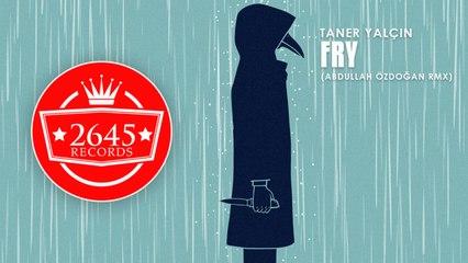 Taner Yalçın Ft. Abdullah Özdoğan - Fry (Remix)