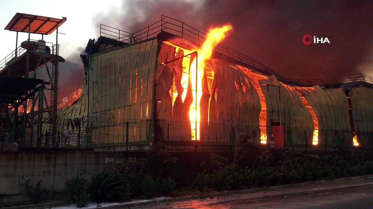 Adana'da nişasta fabrikasında büyük yangın - Dailymotion Video