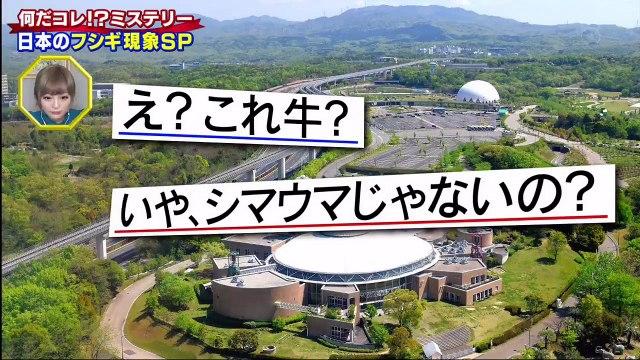 世界の何だコレ!?ミステリーSP 2020年7月1日 日本で起きた!摩訶フシギな現象SP -(edit 1/2)