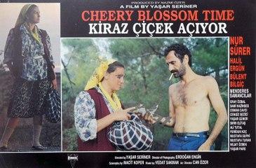 Kiraz Çiçek Açıyor (1990)