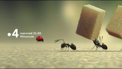 Minuscule, la vallée des fourmis perdues - Bande annonce