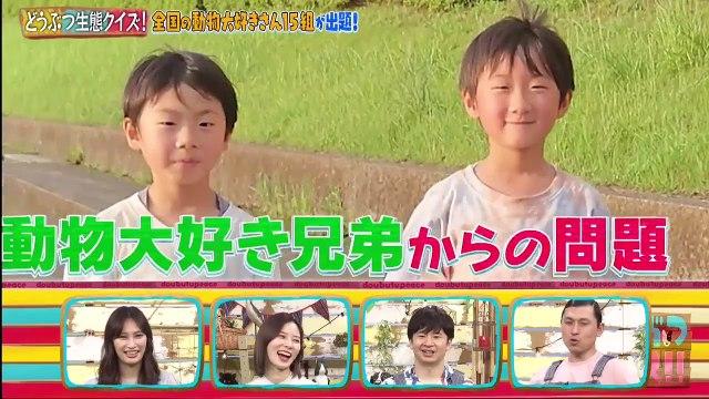 どうぶつピース  2020年7月2日 日本全国どうぶつ大好きさん生態クイズ&九死に一生SP -(edit 1/2)