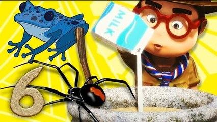 Oko Lele - Bombastic Soup - Episode 6 - Funny cartoons