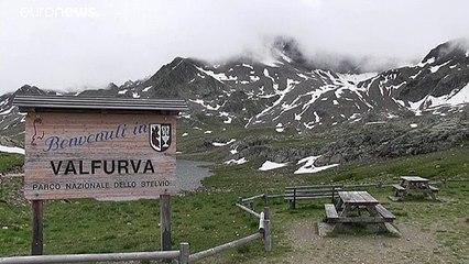 Mais quelle est donc cette mystérieuse neige rose d'un glacier des Alpes italiennes ? Voici les premières hypothèses évoquées par des scientifiques