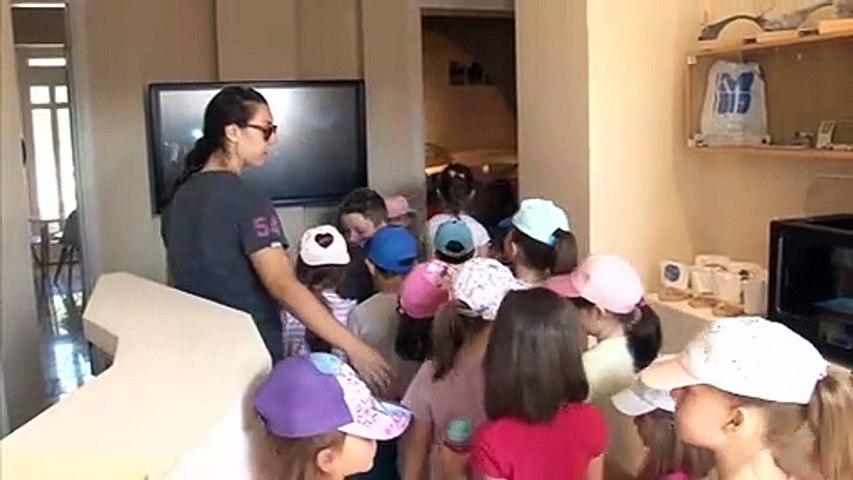 «Βουνο….παιχνιδίσματα» 2020: Με μεγάλη συμμετοχή ξεκίνησε το πρόγραμμα απασχόλησης παιδιών του Δ. Καρπενησίου