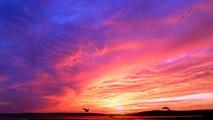 夕焼けと飛び立つ鳥 by エリートスタイル
