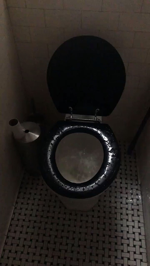 Toilet Really Tries to Be a Hot Tub