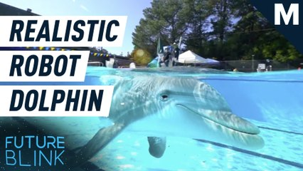 These hyper-real robotic dolphins could replace captive dolphins in shows — Future Blink