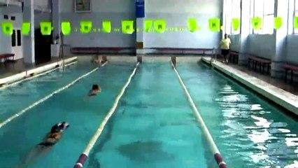 Техника спортивных способов плавания (часть 2)