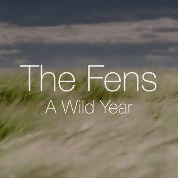 A.Wild.Year.S01E02