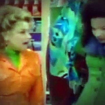 The Nanny S04E18 The Facts of Lice