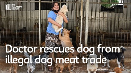 This Indonesian doctor rescues dog from illegal dog meat trade