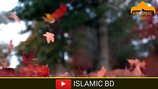 ISLAMIC bd Beautiful