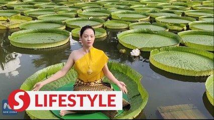 Doing yoga on world's largest water lily leaves in Yunnan, China
