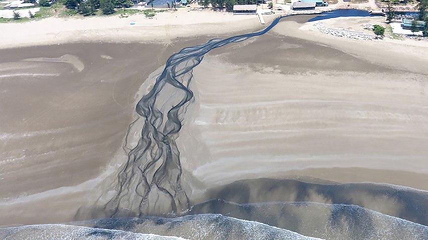 Nghệ An: Nước thải trang trại nuôi tôm chảy thẳng ra biển   Godialy.com