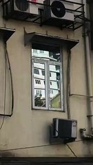 Linesh Desai's_Bombay: Peddar Road