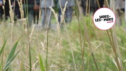 [Hors-les-murs] Commission d'enquête sur  les pollutions des sols : déplacement  dans le Val-de-Marne