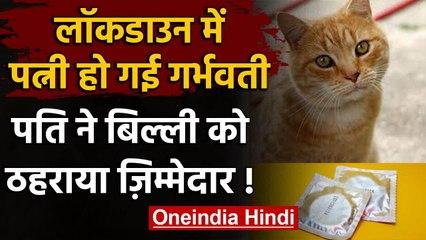 Lockdown के दौरान पत्नी हुई गर्भवती, तो पति ने बिल्ली को ठहराया जिम्मेदार | वनइंडिया हिंदी