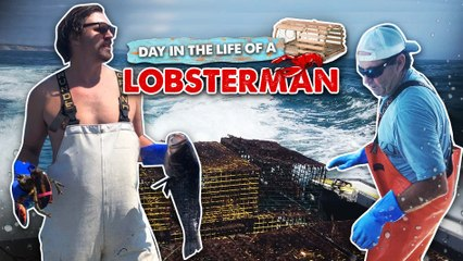 A DAY IN THE LIFE OF A LOBSTERMAN